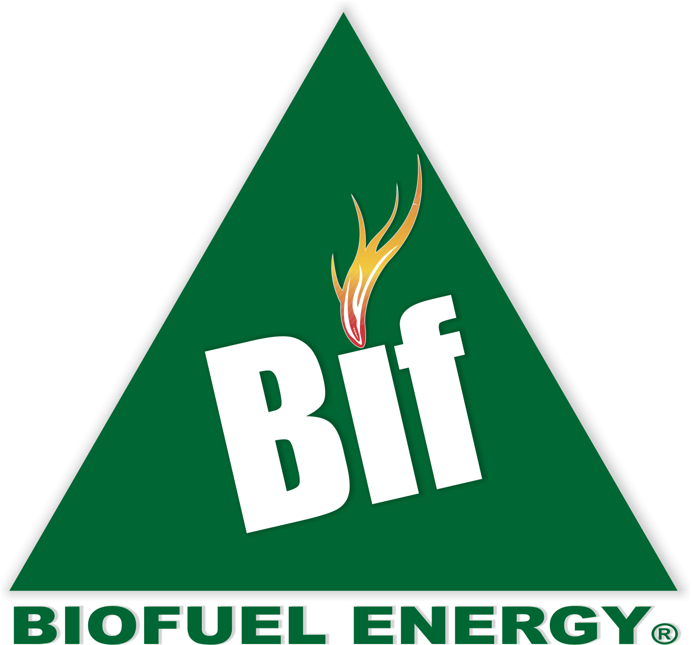Logo Bio Fuel Energy